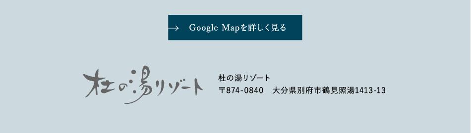 Google Mapを詳しく見る